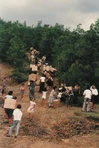 Hilfspakete-(2)